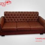 Canapea extensibila Moby